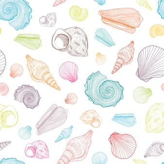 Patrón transparente de colores con conchas de contorno