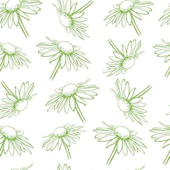 Patrón transparente floral verde claro margaritas blancas ilustración de vector dibujado a mano