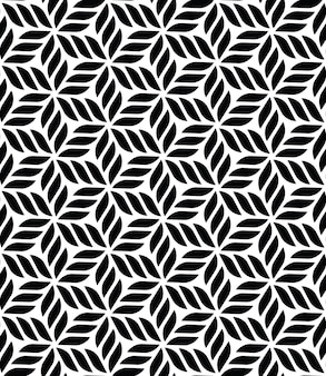 Patrón transparente geométrico floral