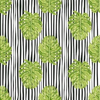 Patrón transparente de hoja de monstera de color verde. adorno de follaje de palmeras tropicales. fondo rayado.