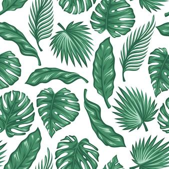 Patrón transparente de hojas de palmera en diseño vintage.