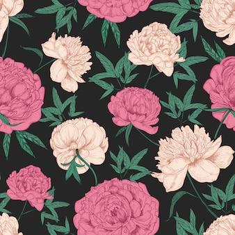 Patrón transparente natural con hermosas flores de peonía dibujado a mano sobre fondo negro.