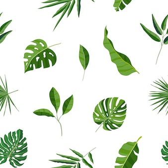 Patrón transparente natural con hojas verdes tropicales o follaje exótico disperso de plantas de la selva. telón de fondo hawaiano. color ilustración vectorial botánica para papel de regalo.