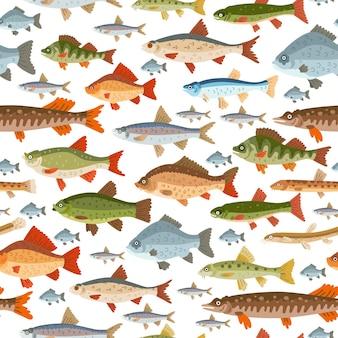 Patrón transparente de peces de agua dulce