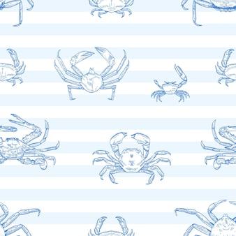 Patrón transparente de vector de cangrejos de río. animales marinos, cangrejos marinos sobre fondo rayado. menú de mariscos del restaurante. comida delicada, criatura del océano con papel de regalo de pinzas, diseño textil de papel tapiz.