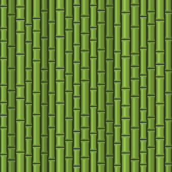 Patrón transparente verde de bambú