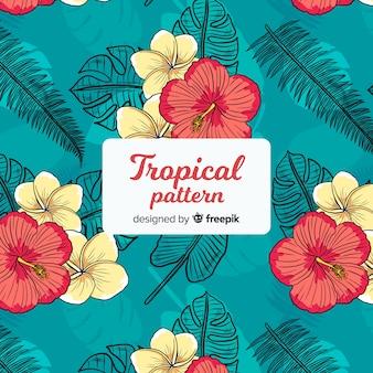 Patrón tropical colorido con flores