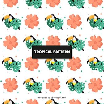 Patrón tropical con pájaros exóticos