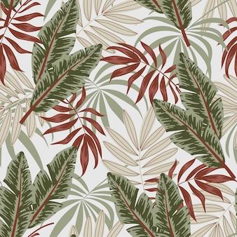 Patrón tropical transparente de verano con hojas y plantas