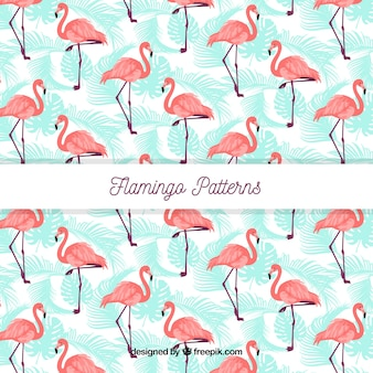 Patrón veraniego de flamenco