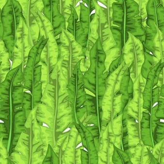 Patrón de verano con hojas tropicales. estilo de dibujos animados.