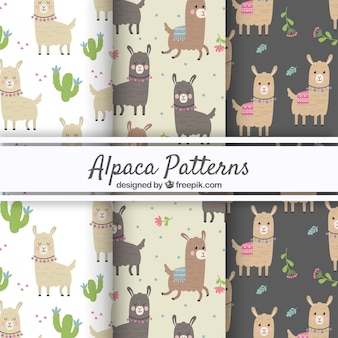 Patrones de alpaca