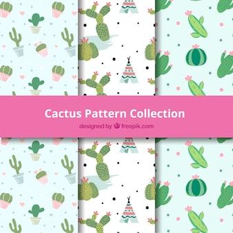 Patrones de cactus con estilo de dibujo a mano