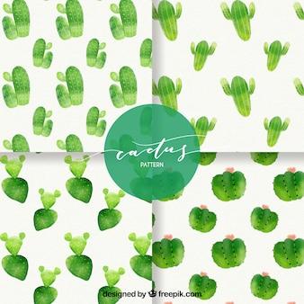 Patrones clásicos de cactus con estilo de acuarela
