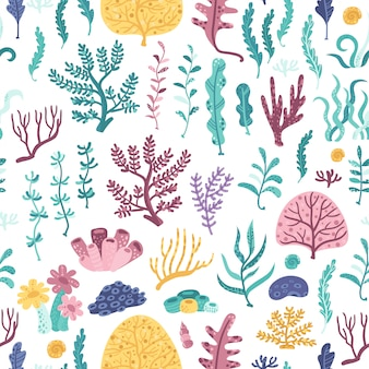 Patrones sin fisuras con algas y corales
