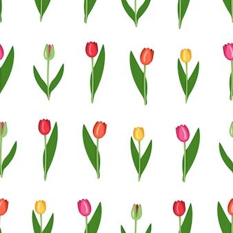 Patrones sin fisuras con flores de primavera de tulipanes