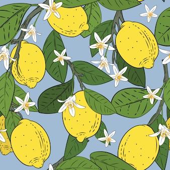 Patrones sin fisuras de ramas con limones