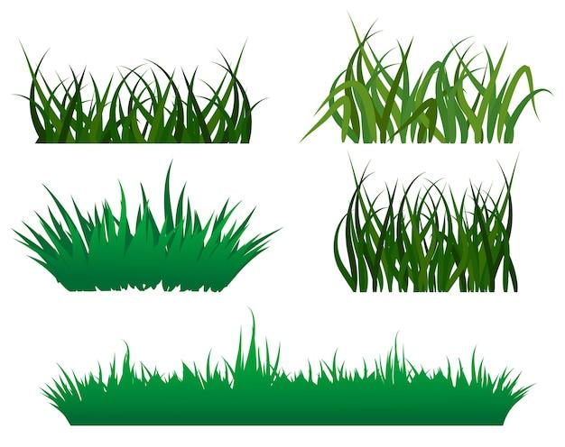 Patrones de pasto verde