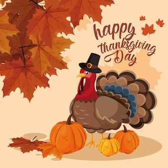 Pavo con calabazas y sombrero peregrino del día de acción de gracias