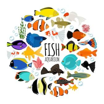Peces de acuario plano concepto redondo con coloridos peces de agua salada y agua dulce burbujas de agua corales aislados