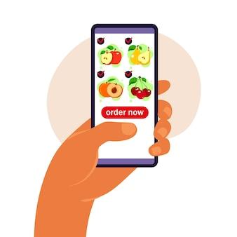 Pedido de comida en línea. entrega de comestibles.
