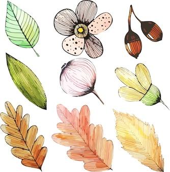 Pegatinas de elementos de diseño de follaje de otoño