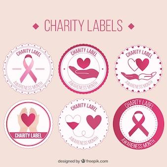 Pegatinas rosas vintage de organización benéfica