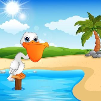 Pelícano de dibujos animados en la bahía de la playa
