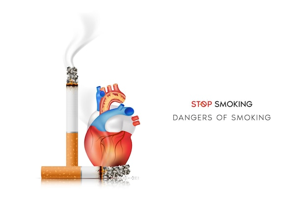 Los peligros de fumar efectos de fumar el riesgo de enfermedad cardíaca