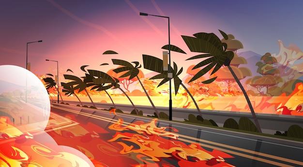 Peligroso incendio forestal arbusto desarrollo de fuego quema hierba cerca de la carretera con palmeras calentamiento global concepto de desastre natural intenso naranja llamas horizontal