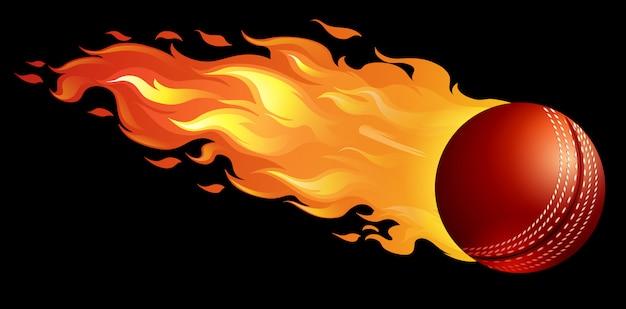 Pelota de cricket en llamas