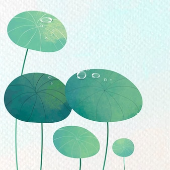 Pennywort verde frondoso