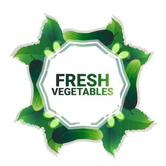 Pepino vegetal colorido círculo copia espacio orgánico sobre fondo blanco patrón estilo de vida saludable o concepto de dieta