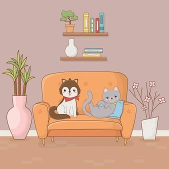 Pequeñas mascotas de perros y gatos en la habitación de la casa