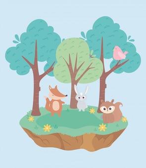 Pequeño conejo lindo zorro pájaro y ardilla animales dibujos animados