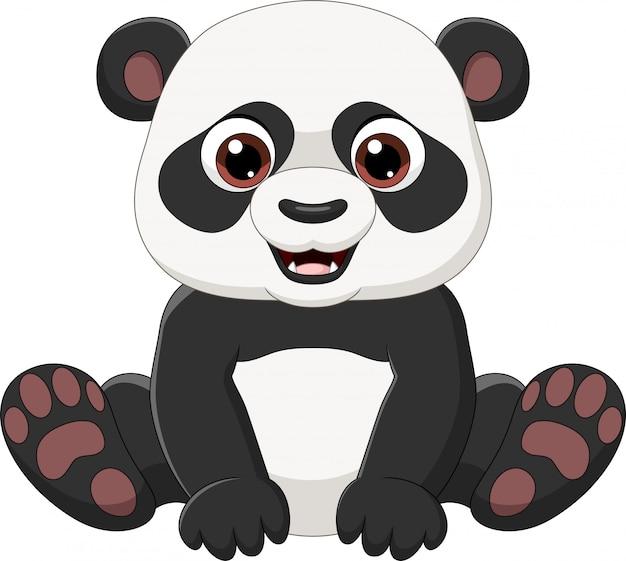 Pequeño panda lindo sentado aislado sobre fondo blanco