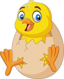 Pequeño pollito de dibujos animados que sale del huevo.