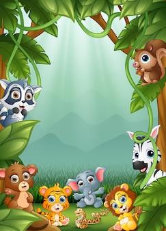 Los pequeños animales y un bosque.