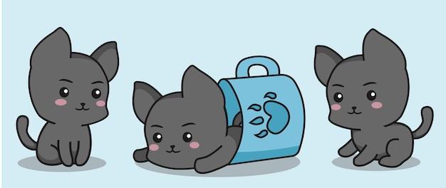 Pequeños gatitos grises