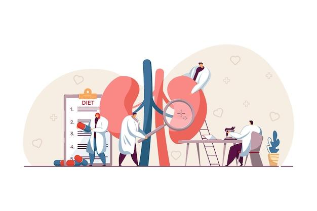 Pequeños médicos que examinan la ilustración plana de los riñones