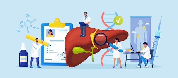 Pequeños médicos tratan la enfermedad hepática. diagnóstico médico de hepatitis a, b, c, d, cirrosis. grupo de médicos que examinan los órganos internos del paciente, realizan pruebas de laboratorio, biopsia, análisis molecular