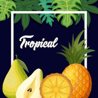 Peras frescas y frutas tropicales de piña.