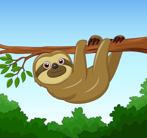 Pereza feliz de dibujos animados colgando en el árbol