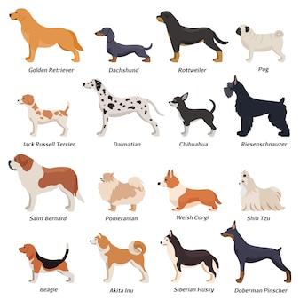 Perfil de conjunto de iconos de perros