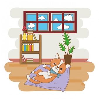 Perro acostado en su cama en la sala de estar