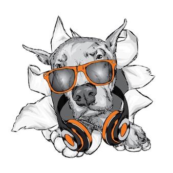 Perro con auriculares. perrito gracioso.