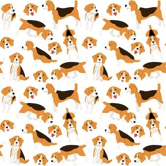 Perro beagle en accion