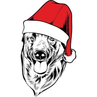 Perro belga malinios con gorro de papá noel para navidad