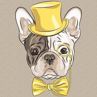 Perro de bulldog francés de hipster divertidos dibujos animados