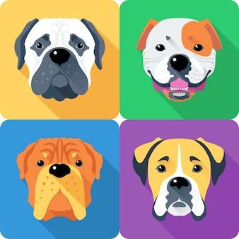 Perro bullmastiff, mastín francés, boxer y bulldog americano raza icono de cara diseño plano